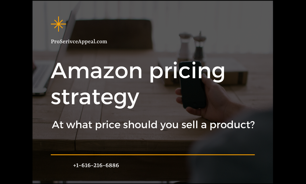 Amazon pricing strategy: at what price should you sell a product?